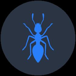 Ants Control Carrara