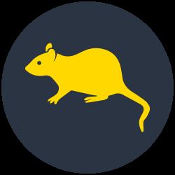 Rodents Control Carrara